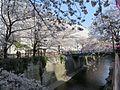 Meguro River Ohashi Junction.jpg
