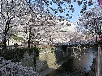 Meguro River - Image: Meguro River Ohashi Junction