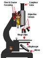 Microscope diagram.png