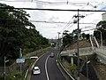 Minamigoyo - panoramio (25).jpg