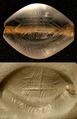 Minoan Seal from Tavşan Adası (Aydın).tif