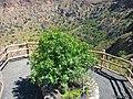 Mirador hacia la caldera - panoramio.jpg