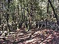 Mons enclos valbouissole ii.jpg