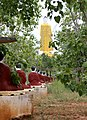 Monywa-Po Khaung-22-Buddhas mit Schirm-stehender Buddha-gje.jpg