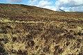Moorland near Beinn a'Mheadhoin - geograph.org.uk - 750069.jpg