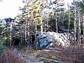 Mount Mitchell Summit Trail ^ Balsam Nature Trail - panoramio.jpg