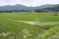 Mt.Kaba 13.jpg