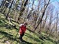 Mushroom picking 02.jpg