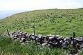 Myogaki stone walls (former Makihata site), Chiburijima.jpg