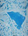 NASA Science Flights Target Melting Arctic Sea Ice (28342487561).jpg