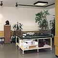 Nahum Tevet, Underground Event, 1997, Coll. Glaskasten Sculpture Museum, Marl, Germany.jpg