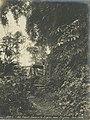 Narrow gauge locomotive in the djungle in Panama.jpg