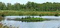 Nationaal Park De Alde Feanen. Locatie, It Wikelslân 014.JPG
