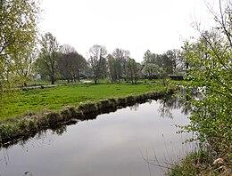 Nederland in de Weerribben.jpg