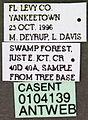 Neivamyrmex opacithorax casent0104139 label 1.jpg