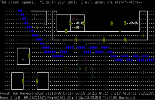 <i>NetHack</i> rogue-like computer game