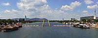 Neue Donau mit der Fußgängerbrücke Ponte Cagrana in Wien.jpg