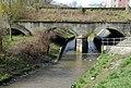 Neustaedter Kanal Fischaquerung.jpg