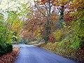 New Road, Ball's Green - geograph.org.uk - 1034762.jpg