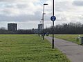 Newcastle Town Moor, 1 February 2013.jpg