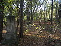 Nieczynny cmentarz w Wiązownicy Małej.JPG
