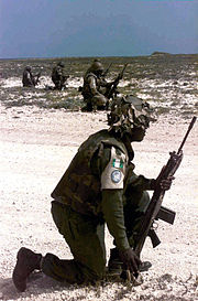 Nigerian troops in Somalia with an FAL.