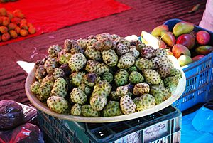 "English: a fruit called ""noni"" in Me..."