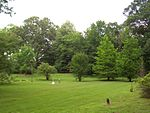 Oaklawn gardens 1.jpg