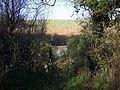 Old-style stile - geograph.org.uk - 619223.jpg