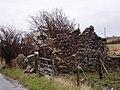 Old farmhouse - geograph.org.uk - 153754.jpg