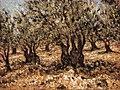 Olive grove 30x40 by Samir Sammoun.jpg