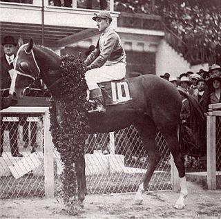 Omar Khayyam (horse) British-bred Thoroughbred racehorse
