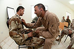 On the Ground With Advise and Assist Commander DVIDS222076.jpg