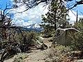 On the Trail, Eastern Sierra Nevada 5-19-15 (18052523402).jpg