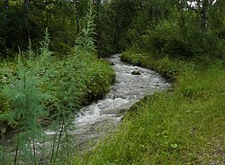 Oroktoy river 1.jpg