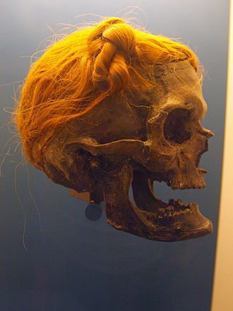 Osterby Man - Side view showing Suebian knot