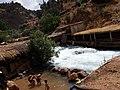 Oum Er-Rbia River in Khnifra.jpg