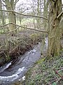 Outfall stream from Coate Water, Swindon - geograph.org.uk - 340482.jpg