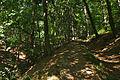 Přírodní park Velký Kosíř, okres Prostějov (08).jpg