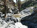 Palm Canyon waterfall 1.jpg