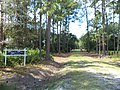 Palmetto Pines Plantation, Atkinson County.JPG