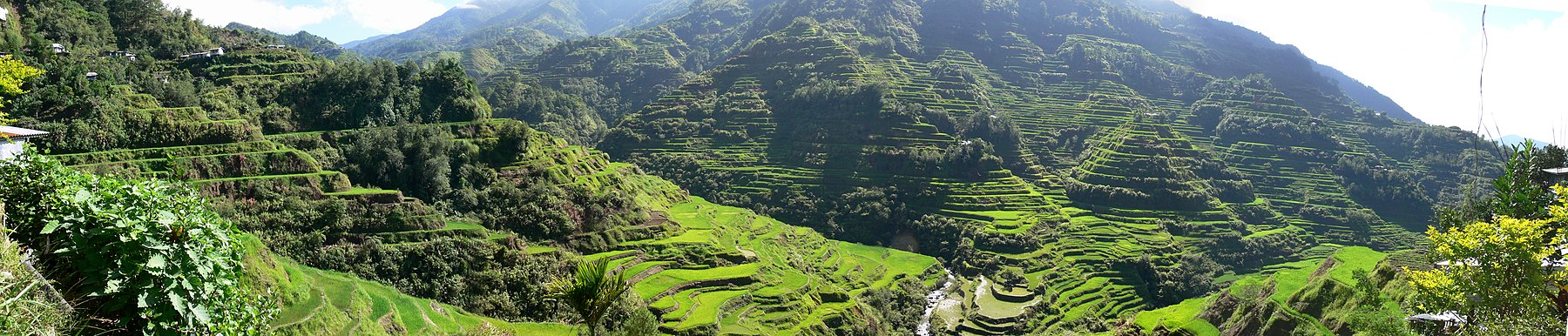 The Banaue Rice Terraces where Ifugao/Igorot utilized terrace farming in the steep mountainous regions of northern Philippines over 2000 years ago. - Philippines