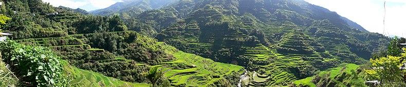 Terrazzamenti di Banaue scavati 2000 anni fa dagli antenati della popolazione indigena Batad