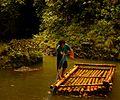 Pangil bamboo ferryman.jpg