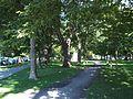 Parc La Fontaine 12.jpg