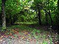 Park prirode Kamaraš4.JPG