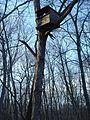 Parker Woodland treehouse.jpg