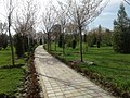 Parks and squares in Dushanbe (3).jpg