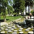Parque do Bonfim, Setúbal, Portugal (3379461776).jpg