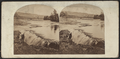 Passaic Falls, N.J, from Robert N. Dennis collection of stereoscopic views.png